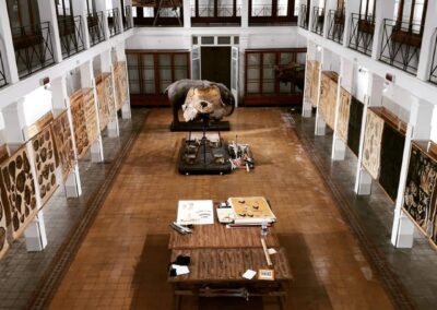 Installation of the Zoological Museum – University of Catania
